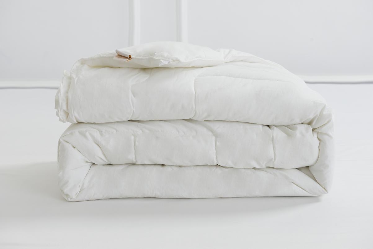 Ruột chăn